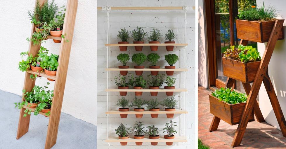 Dicas de como criar uma horta em seu apartamento.